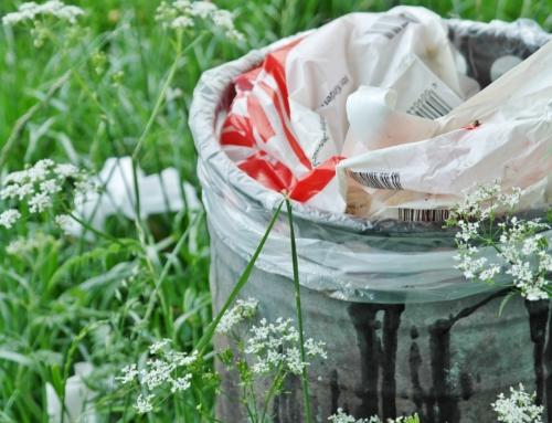 4 mitos falsos sobre el reciclaje