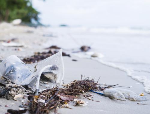Conoce el origen histórico del plástico