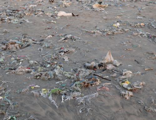 ¿Qué son las islas de basura y cómo se originan?
