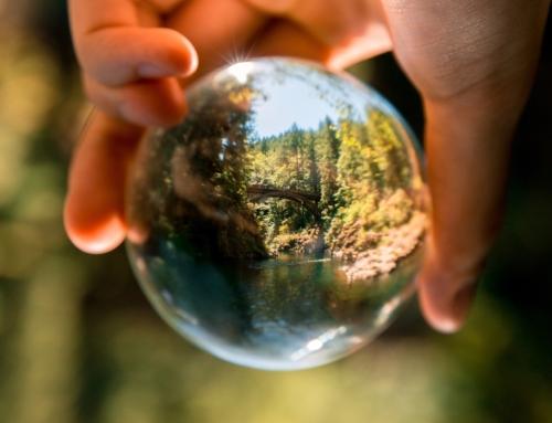 Ayuda al medio ambiente con estos cuatro consejos